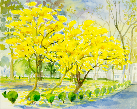 greensward: Watercolor painting original landscape yellow, orange color of golden tree flower in sky and cloud background.