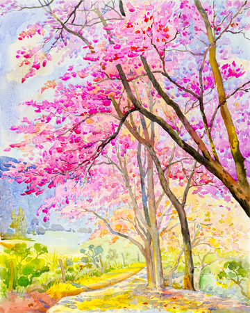 Watercolor landscape original painting colorful of  Wild himalayan cherry on  mountain and emotion in blue background. Stock Photo