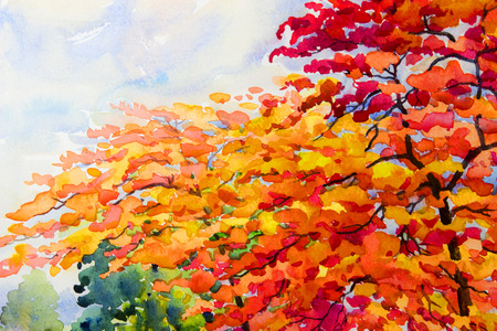Painting watercolor landscape original colorful of red tree flowers and emotion in cloud background,Spring of peacock flowers tree in spring season,Impressionist watercolor painting style Stock Photo