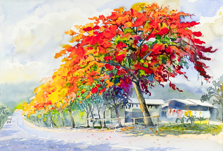 Watercolor landscape original colorful of peacock flower tree and emotion in blue with cloud in the sky background.