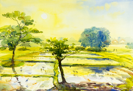 Watercolor landscape original painting colorful of fields sun and emotion in sky,cloud background.