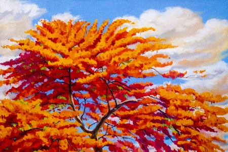 Oil painting landscape original red orange color of Peacock flowers on top view in the morning. Hand painted blue sky, cloud background,beauty nature summery season,illustration, copy space