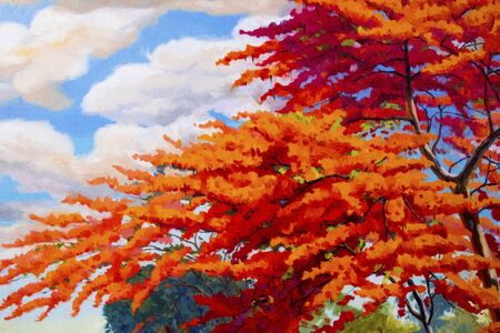 Oil painting landscape original red orange color of Peacock flowers on top view in the morning. Hand painted blue sky, cloud background,beauty nature summery season,illustration, copy space decoration.