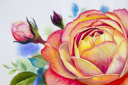 Orange pink rose flower. Watercolor paintings original of roses and green leaves in spring on paper white background. Original painting with invitation, Valentine card, classic style. Stock Photo