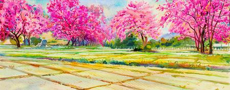 Painting watercolor landscape pink color of Wild himalayan cherry flowers, cornfield,  mountain in the spring season. Hand painted, blue sky, cloud background, beauty nature, winter season, panorama Banque d'images