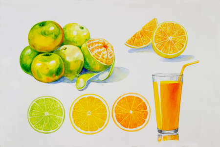 Painting summer orange collection, isolated. Original hand drawn watercolor paintings, illustration on white background with poster wallpaper for fun party, promotion banner and brochures flyers. 写真素材
