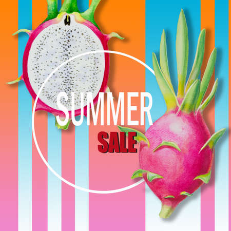 Summer sale with holiday. Paintings fruit dragon fruit and text. Hand drawn watercolor painting colorful illustration of poster wallpaper, fun party discount promotion banner in color line background. 写真素材