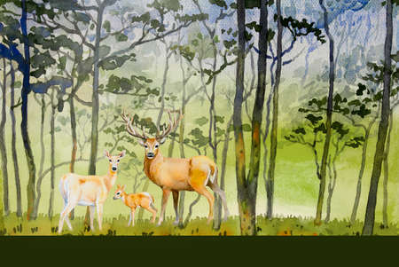 Paintings forest- Watercolor landscape original of animal, deer family concept and eco meadow countryside. Hand painted illustrationon paper green trees background, beauty nature winter season.