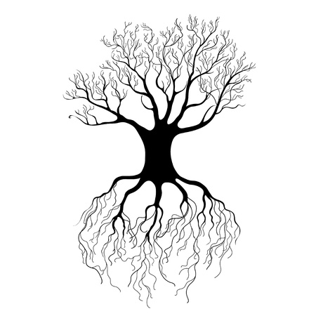 beautiful black tree graphic on a white background Stock Vector - 19376893