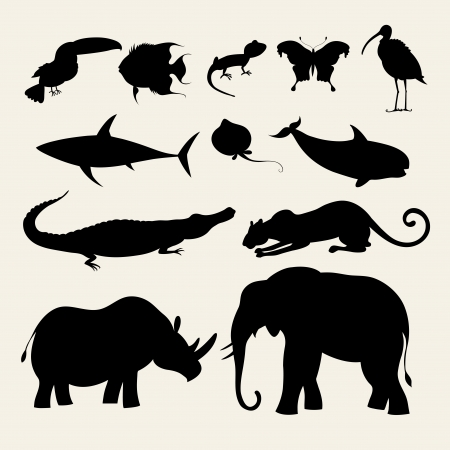 different silhouettes of animals