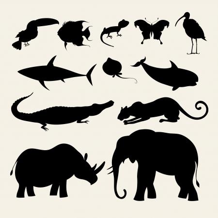 nashorn: verschiedene Silhouetten von Tieren