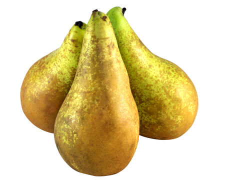 bright ripe green pears on white background   photo