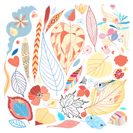 Colorful set of autumn leaves and other natural elements. Vector illustration  Vector
