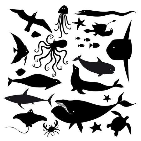 set of graphic marine animals on a white background Vector