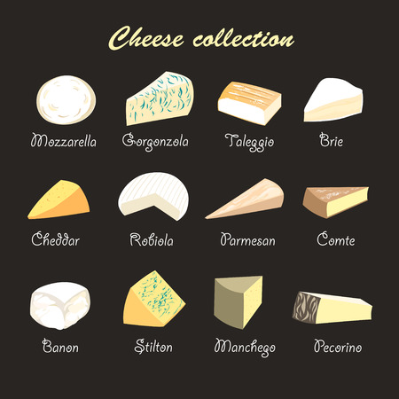 cheese: graphic beautiful collection of cheeses on a dark background