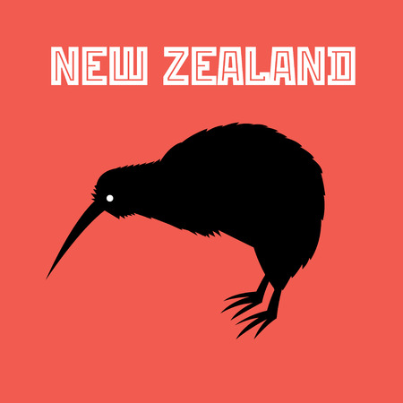 Graphic color symbol of New Zealand Kiwi bird