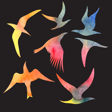 probation: Beautiful bright watercolor set of different birds. Illustration