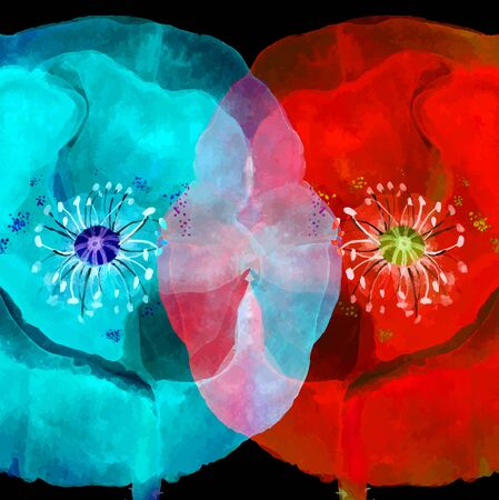 contrast floral: Watercolor floral a background with poppies contrast