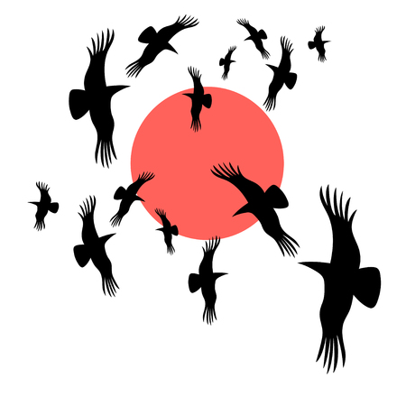 circling: vector graphic image black crows circling in the sun