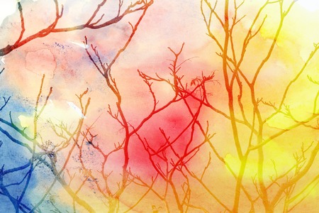 tree of life silhouette: miracle tree branches of a tree on a colorful background
