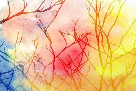 arbol de la vida: ramas de los �rboles milagro de un �rbol sobre un fondo de colores Foto de archivo