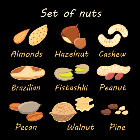 cashews: large set of various nuts with the names on a black background
