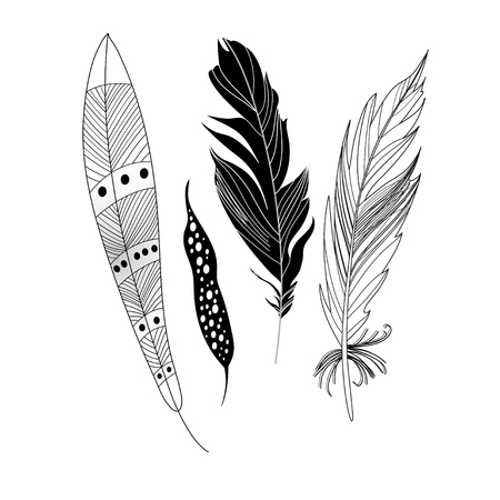 model motive: Graphic black feathers close-up on a white background set. Vector Illustration