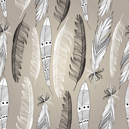 bird feathers: Graphic design beautiful bird feathers on a brown background. Vector illustration for design.