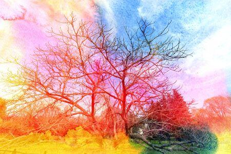 wonderful: Watercolor retro wonderful spring trees in park Stock Photo