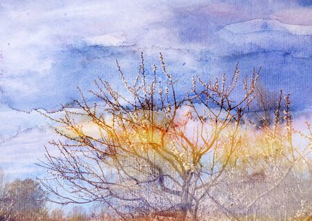 Aquarell Retro wunderbare Frühling Bäume im Park Standard-Bild