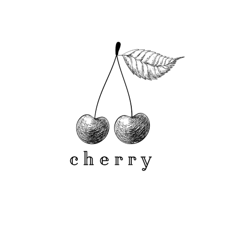 Cherry vector drawing. Isolated hand drawn two berries on white background. Summer fruit engraved style illustration. Detailed vegetarian food. Great for label, poster, print