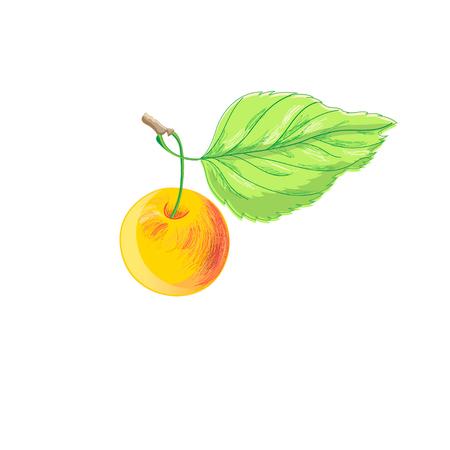 白地に明るいリンゴのシンボルのイラスト