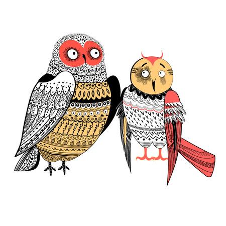 2 つの面白いフクロウ