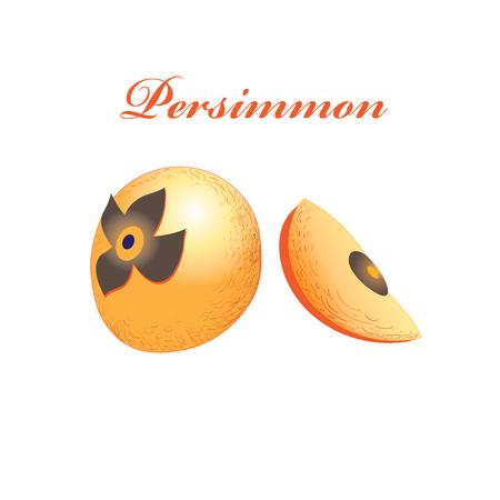 Vecteur orange douce kaki isolé sur fond blanc Banque d'images - 83237306