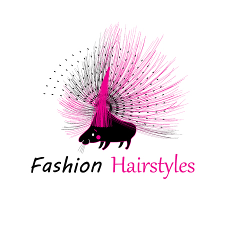 Vibrant vector funny porcupine fashion on a white background