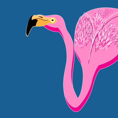 Graphic vector portrait of pink flamingos on a blue background