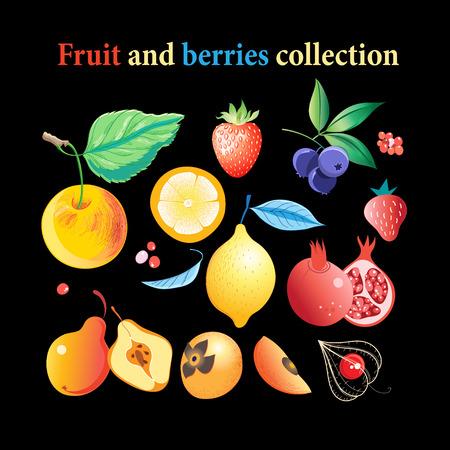 밝은 맛있는 과일과 열매 어두운 배경 벡터 집합.