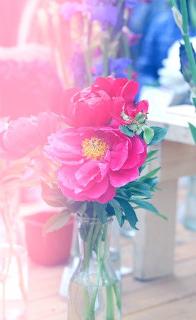 Photo interesting beautiful peonies in a summer park