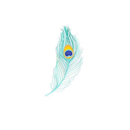 흰색 배경에 공작 새 깃털의 벡터 아이콘