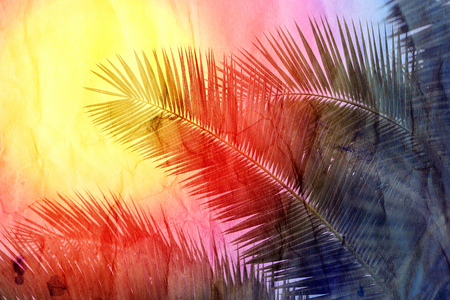 Retro beautiful multicolored palm trees at sunset