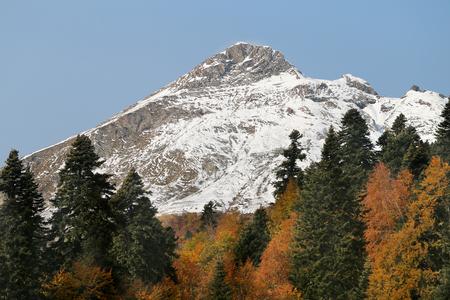 太陽に照らされた山々の素晴らしい雪に覆われたピークの写真