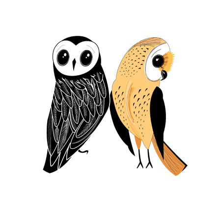 Graphics super two owls isolated on a white background