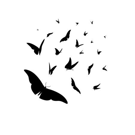 Vector set of different black silhouettes of butterflies on a white background