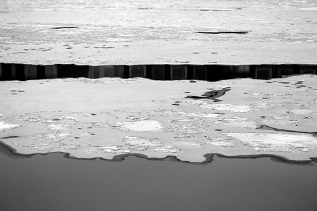 Foto von schönem Eis und Wasser auf dem Fluss im Winter