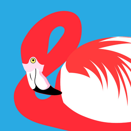 Vector portrait of a red flamingo on a blue background