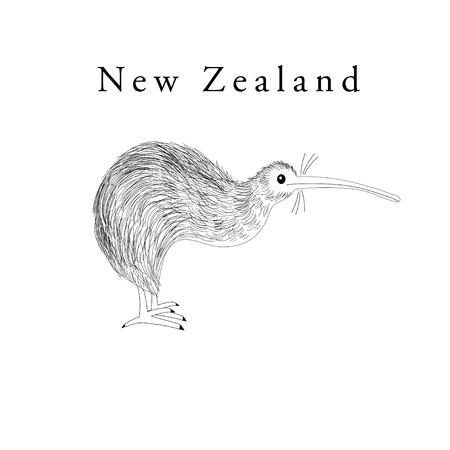 Vector graphics symbol of New Zealand bird Kiwi on white background