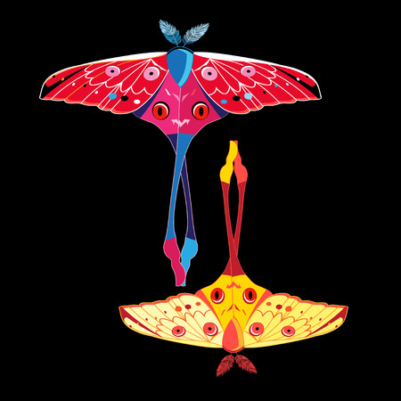 Vector illustration of an exotic butterfly on a dark background