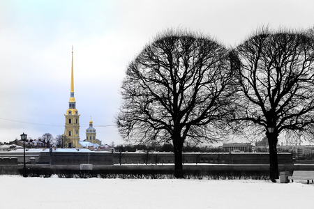 Photo beautiful winter landscapes in the city of St. Petersburg in Russia Stock Photo