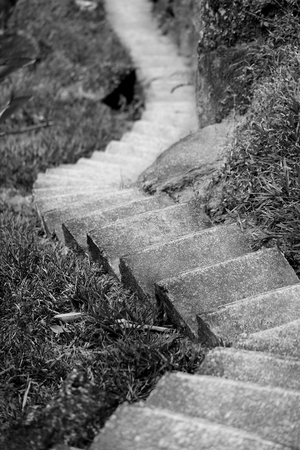 Photo of an interesting staircase in a park in the jungle Stok Fotoğraf