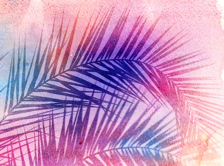 Photo of bright tropical palms on a sunny island